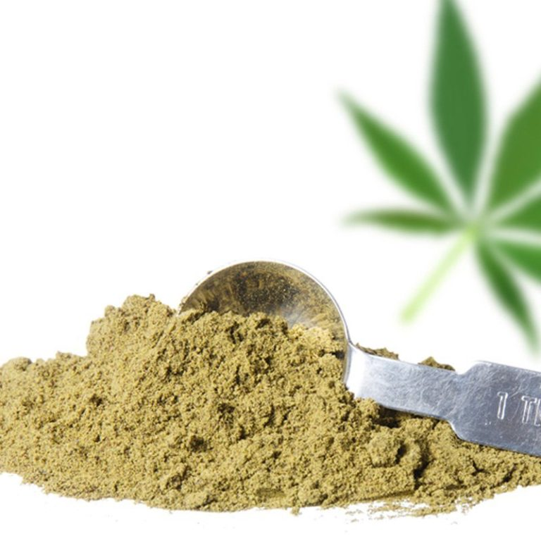 What Is Hemp Protein?