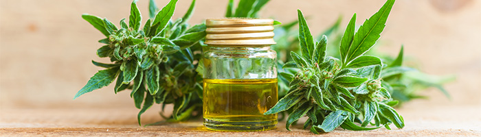 What You Need to Know About Organic CBD Oil