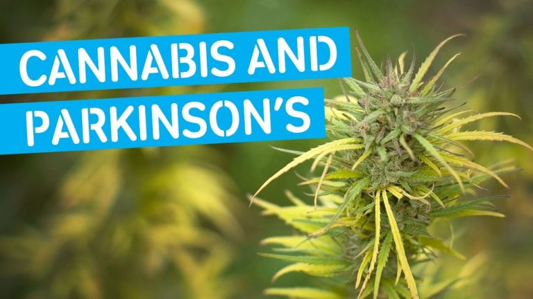 Can Marijuana Treat Symptoms of Parkinson's Disease?